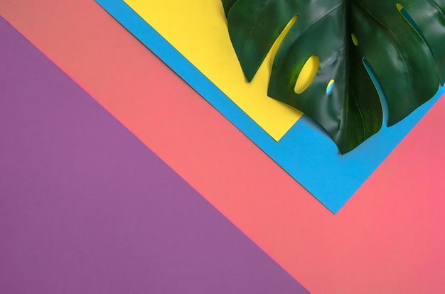 熱帯の葉のモンスターは4つの色合いのソリッドカラーの黄色、ピンク、バイオレット、ライトブルー