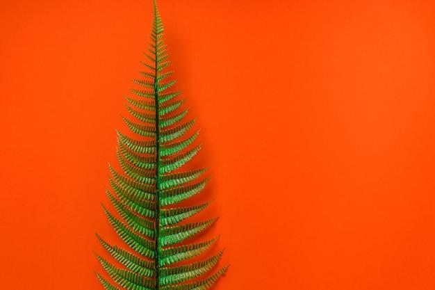 オレンジ色の背景に熱帯の葉。自然な背景、テキストのためのスペース