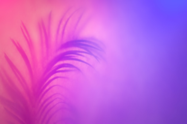 Тень tropical leaf в модной двухцветной неоновой подсветке. абстрактный фон в фиолетовых тонах.