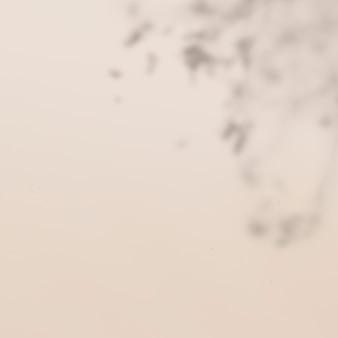 ベージュの背景に熱帯の葉の影