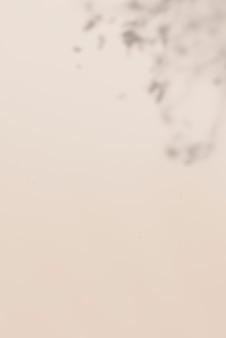 베이지색 배경에 열 대 잎 그림자