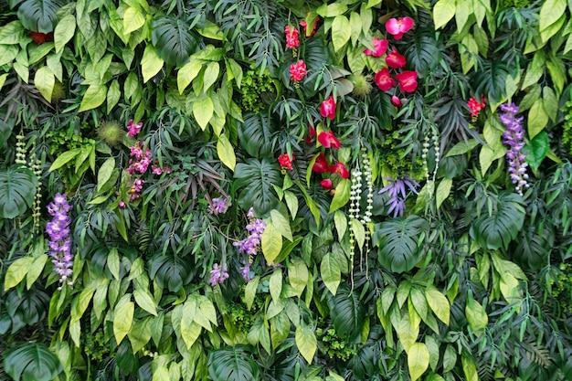 Тропические листья и цветы фон. природа фон вертикального сада с тропическими зелеными листьями