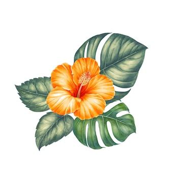 熱帯の葉と花。
