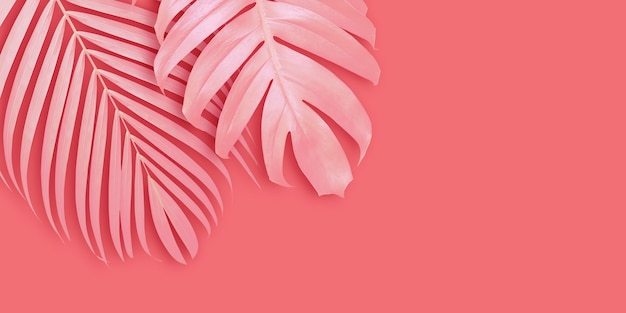 Tropical leaves banner background with copy space