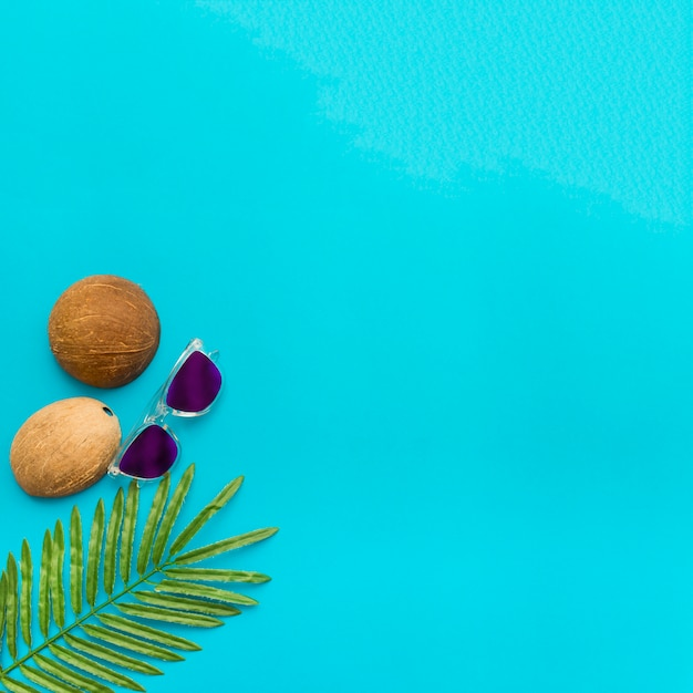 Tropical leaves and coconuts on blue background