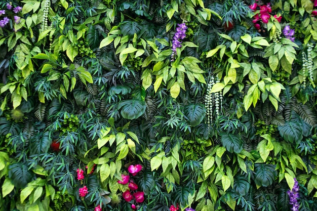 Tropical leaves and flowers background. nature background of vertical garden with tropical green leaf