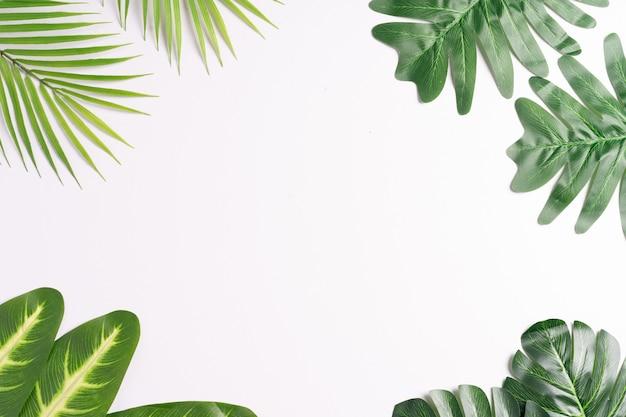 Тропические листья обрамляют друг друга, оставляя пространство между ними, летний фон