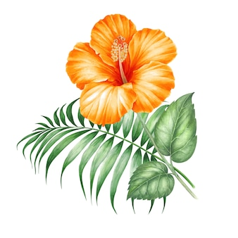 Tropical leaves and hibiscus flower