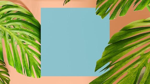 熱帯の葉は、ピンクの背景にテキスト用の灰色の正方形のモンステラを残します。 3dレンダリング