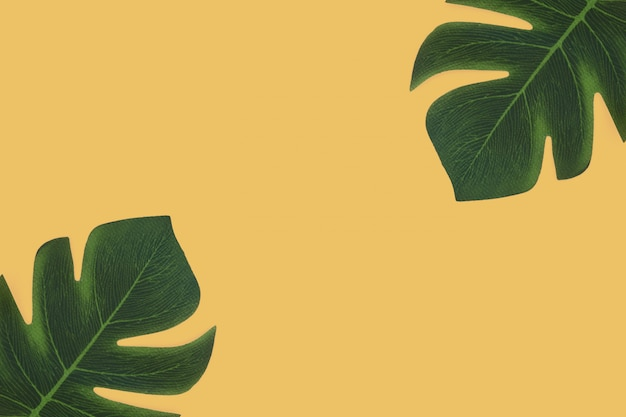 黄色の背景に熱帯の葉