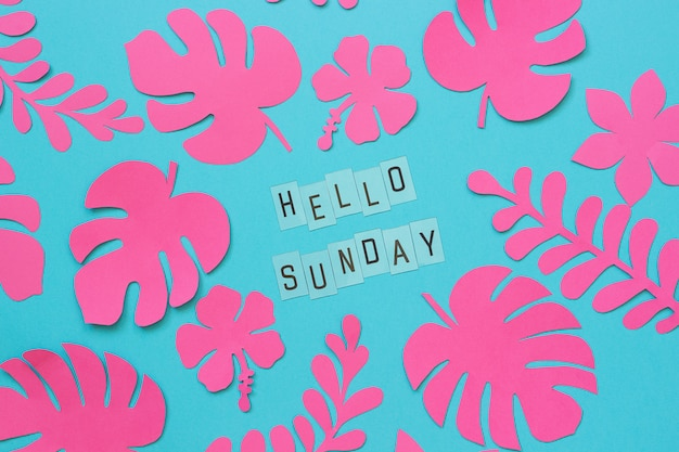 Tropical leaves of paper and text hello sunday. flat lay, top-down composition, creative paper art