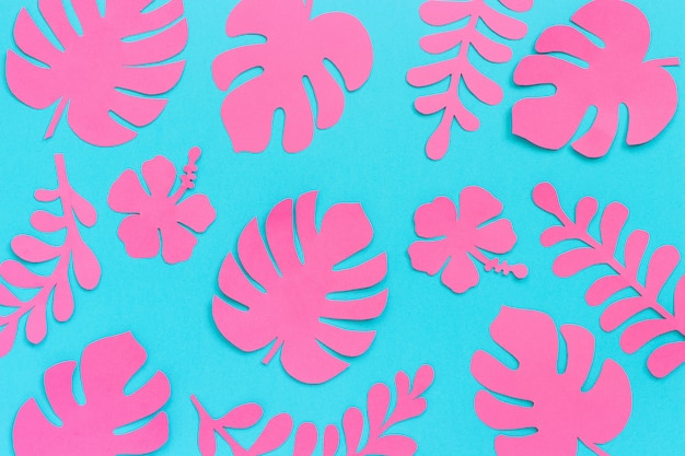 Tropical leaves pattern. trendy pink tropical leaves of paper on blue background.
