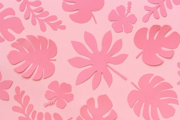 Tropical leaves pattern. trendy pink tropical leaves of paper on pink background.