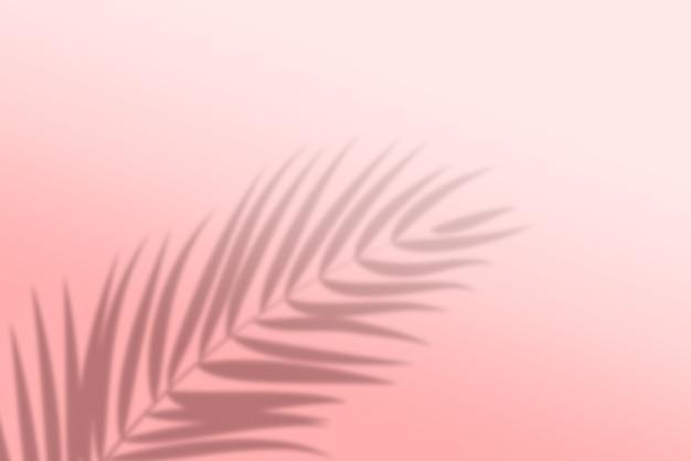 熱帯の葉の影の背景