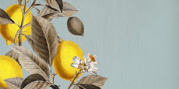 Тропический лимон на синем фоне вектор