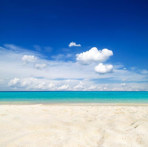 Тропический остров мальдивы с пляжем