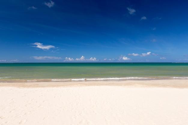 백사장과 바다가 있는 열대 몰디브 섬