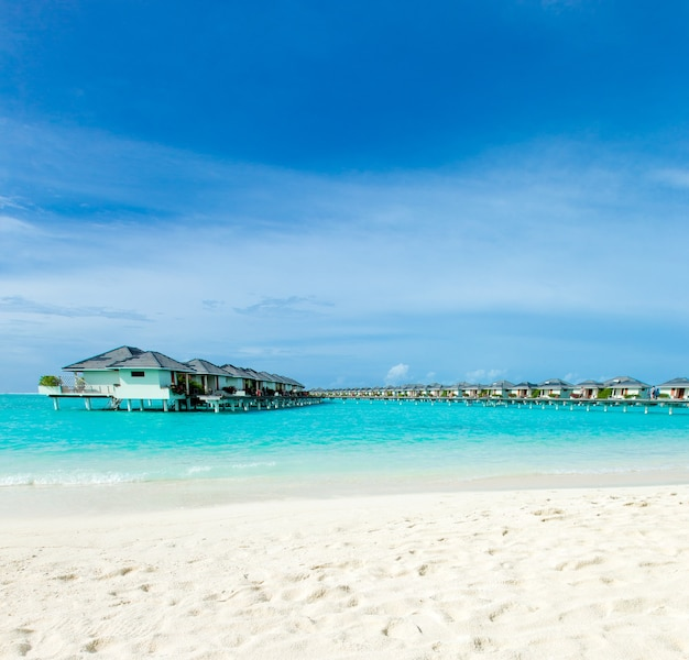 白い砂浜と海のある熱帯モルディブ島