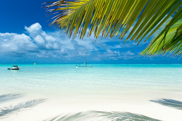 Tropical maldives island with white sandy beach and sea