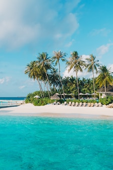 Tropical maldives resort hotel on island