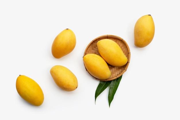 Тропические манго на белой поверхности
