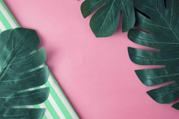 熱帯のモンステラは、ピンク色の背景、テキスト用のスペースをコピーします。