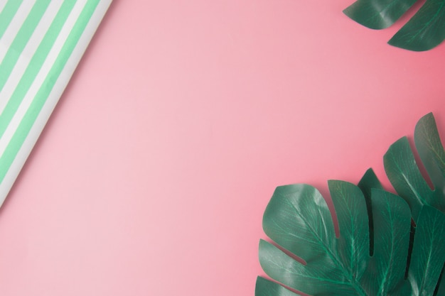 Tropical monstera leaves on pink background, copy space for text.