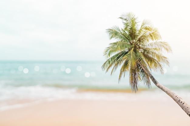 Пляж тропической природы чистый и белый песок летом с голубым небом солнца и фоном боке.