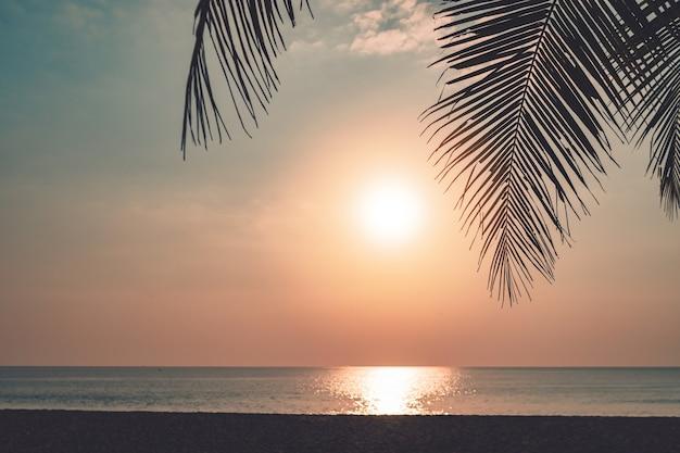 Время неба захода солнца пляжа тропической природы чистое с предпосылкой света солнца.