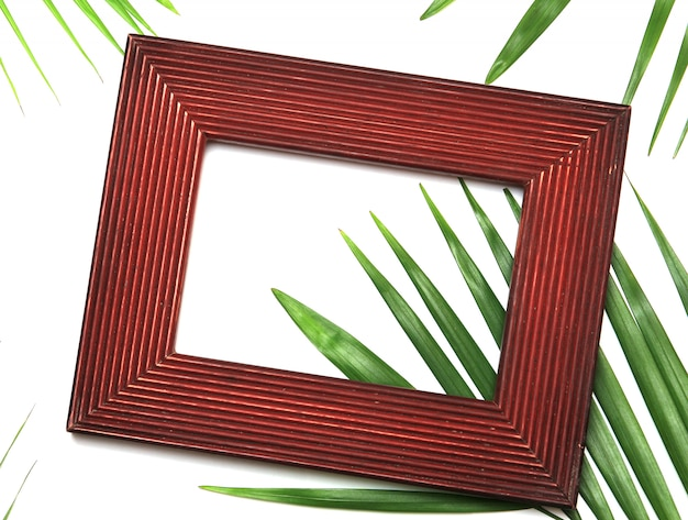 Tropical nature green palm leaf in picture frame