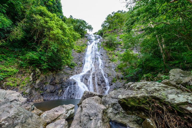 Tropical nature landscape with waterfall