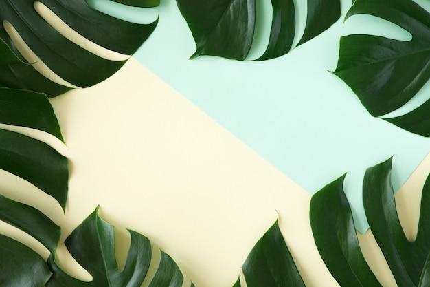 熱帯のヤシの背景。青と黄色の背景に緑の熱帯の創造的なレイアウトを残します。最小限のボーダー、コピースペースを持つ夏フラットレイアウトコンセプト