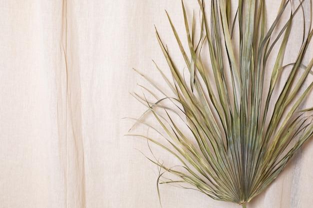 천연 목화 패브릭 배경에 열대 야자 건조 잎 프리미엄 사진