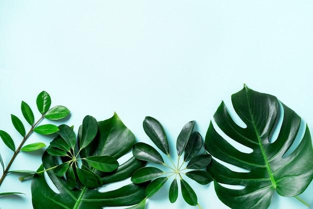 복사 공간와 파란색 배경에 열 대 팜 리프 프레임. 평평하다. 평면도. 여름 또는 봄 자연 개념.