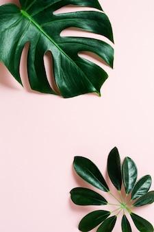 복사 공간와 분홍색 배경에 열 대 팜 리프 프레임. 평평하다. 평면도. 여름 또는 봄 자연 개념.