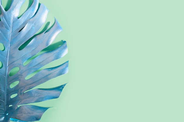 Tropical palm leaf monstera on green abstract pattern for design