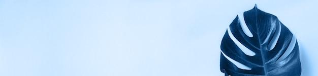 コピースペースと古典的な青い背景の上のモンステラの熱帯のヤシの葉。フラットレイ。上面図。夏または春の自然の概念。トーンの画像。