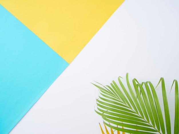 Тропические пальмовые листья в цвет фона