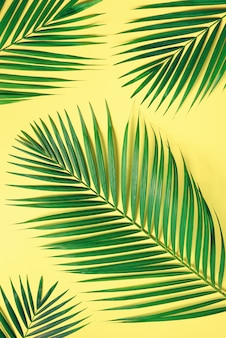 Tropical palm leaves on pastel yellow background. minimal summer concept. creative flat lay with copy space. top view green leaf on punchy pastel paper