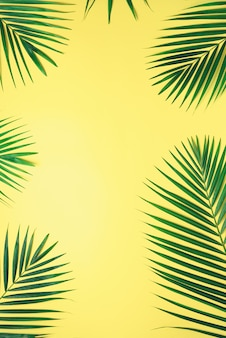 Tropical palm leaves on pastel yellow background. minimal summer concept. creative flat lay with copy space.