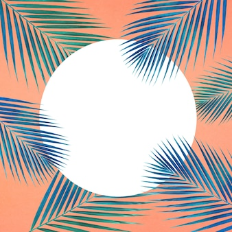 Tropical palm leaves pattern with white copy space on pastel color background.