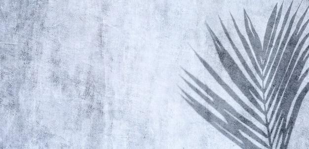 Тропическая пальма оставляет тень на цементной стене. летний фон концепция