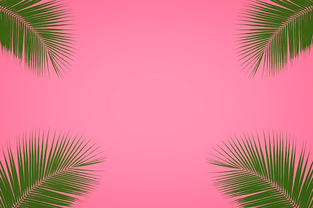 Tropical palm tree leaf on pastel pink background, summer background