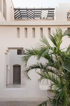 Тропическая пальма с пышными зелеными листьями возле белого дома, курортное здание с голубым небом