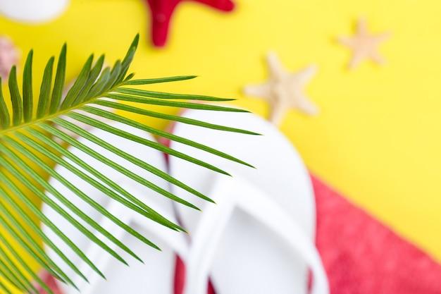 Ветви тропических пальм с размытыми