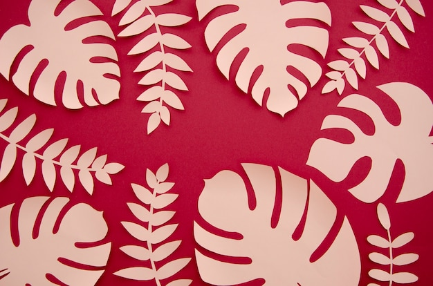 Tropical pink monstera plants in the style of cut paper