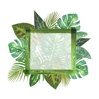 Tropical plants frame background