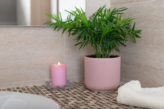 熱帯の鉢植えのチャメドレア、バスルームのキャンドルとバスタオル。居心地の良いホームコンセプト。水平方向の画像。