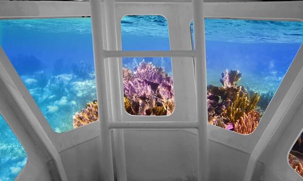 Tropical reef view from underwater submarine