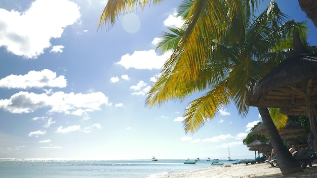 열대 리조트와 바다 옆에 있는 빈 데크 체어